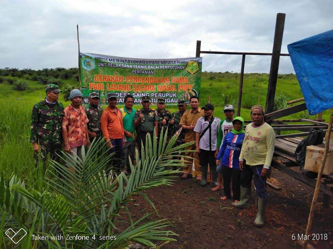 Dinas Pertanian Terus Lakukan Pengendalian Hama