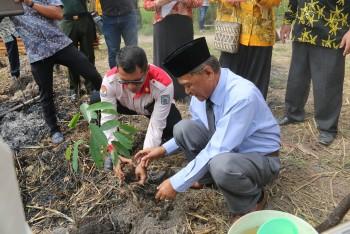 Tanam Pohon, Kaharuddin Ajak Masyarakat Memelihara Pohon yang Ditanam