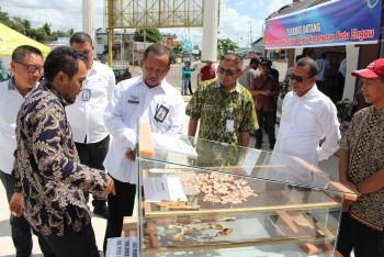 Pembukaan TTG & Pameran Produk Unggulan Khas Desa Berlangsung Meriah